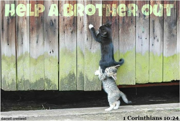 help-a-brother-out1.jpg