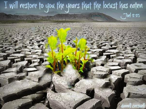 joel-2:25-i-will-restore-what-the-locust-has-eaten