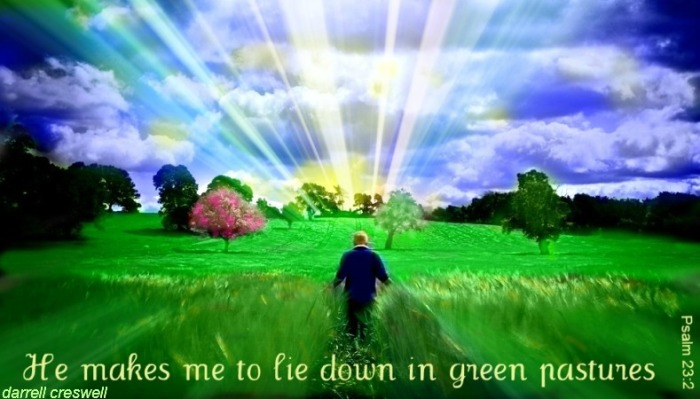 psalm-23-he-makes-me-lie-down-in-green-pastures
