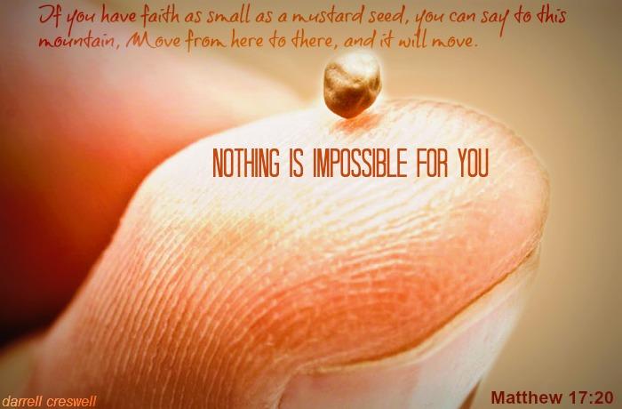 mustard seed faith Matthew 1720