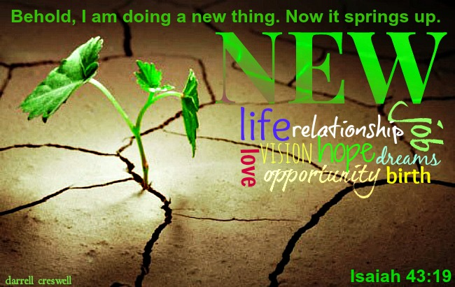Isaiah 43 19 A new thing springs up
