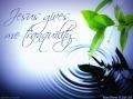 Jesus gives me peace matthew 11 28