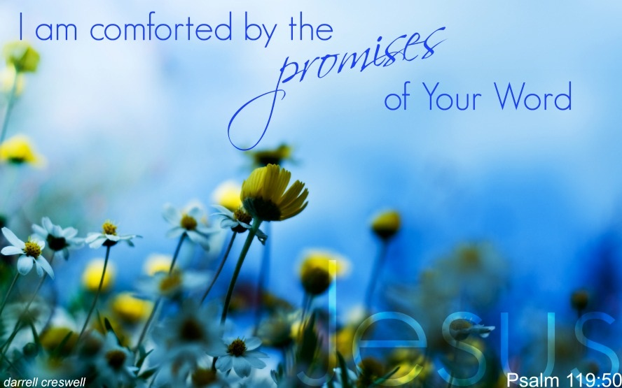 Comfort in God's Word - Inspirational Bible Verses - Psalm 119