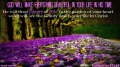 Beautiful life God's plan flowers grace Ecclesiastes 3