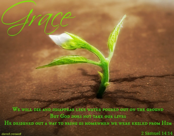2 Samuel 14,14 - appointed die life grace